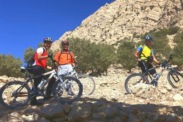 Three people with mountain bikes in the hills.