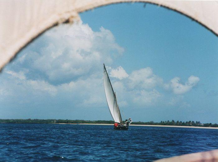 A sailboat sailing.