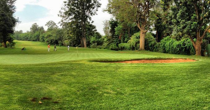 A golf course.