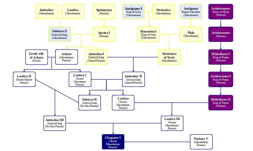 cleopatras ancestry family tree cleoptra i syria 7