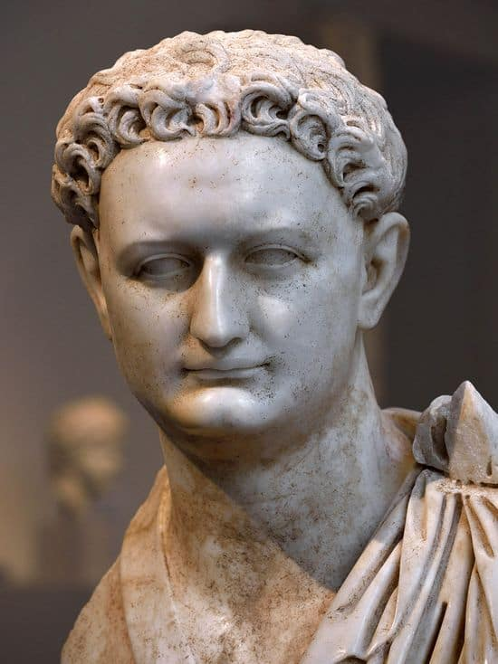 Marble face of middle-aged man. He has an elaborate hairdo. His face is squarish. His forehead is high and wide, he has squinting small eyes, his nose is aquiline, his mouth small, his chin pointy.